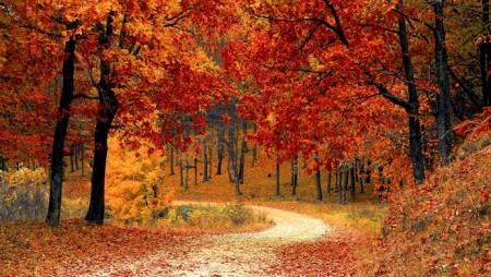 Saveti kako da se pripremite za jesen